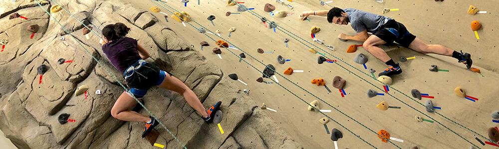 Climbing Wall 1000 X 300