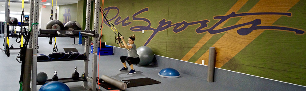 Recsports Wall Mural And Trx